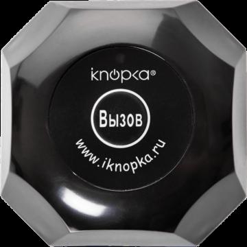 Кнопка вызова iKnopka APE560